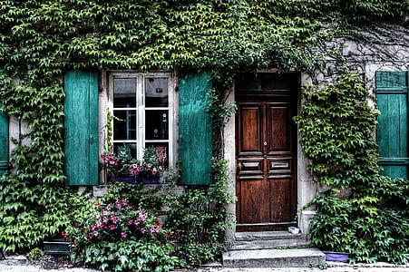 ivy, facade, house, belgium, door, windows, shutters