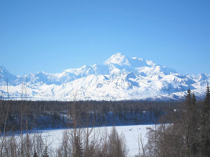 Puig, McKinley, paisatge, Alaska, Parc Nacional, Denali, Parc Nacional de Denali