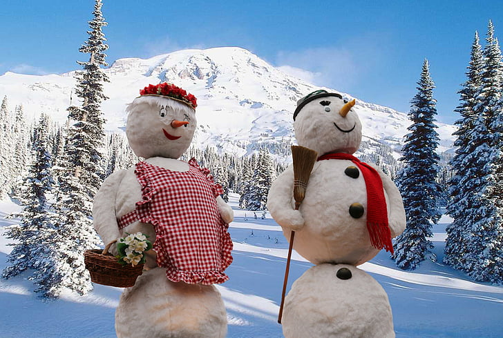 tuyết, mùa đông, tuyết, wintry, khu rừng mùa đông, giấc mơ mùa đông
