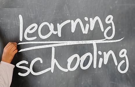 styrelsen, krita ombord, kunskap, Lär dig, lärande, skolan, studera