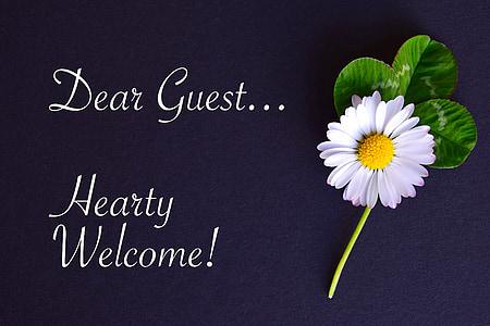 suurlähetystö, kartta, Tervetuloa, Asiakkaamme, hanhet kukka, Four leaf apila