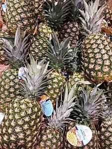 Ανανάς, φρούτα, φρούτα, νέοι ανανά, φυτό, εξωτικά, εξωτερική