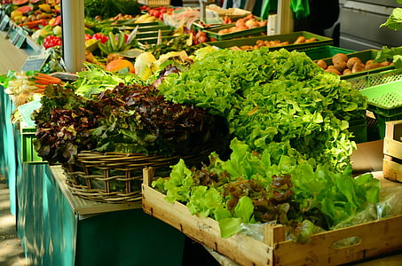 salad, market, market stall, green salad, vegetables, frisch, healthy