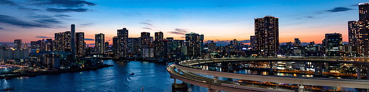 rainbow bridge, tokyo, bridge, landmark, travel, architecture, japan