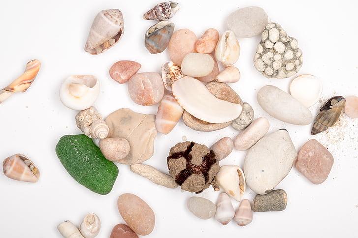 kamene, mora kamene, more, Shell, morský piesok, morské dno
