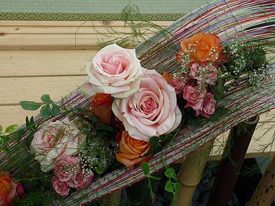 Rosa, Roses, flors, flor, vermell, planta, flor
