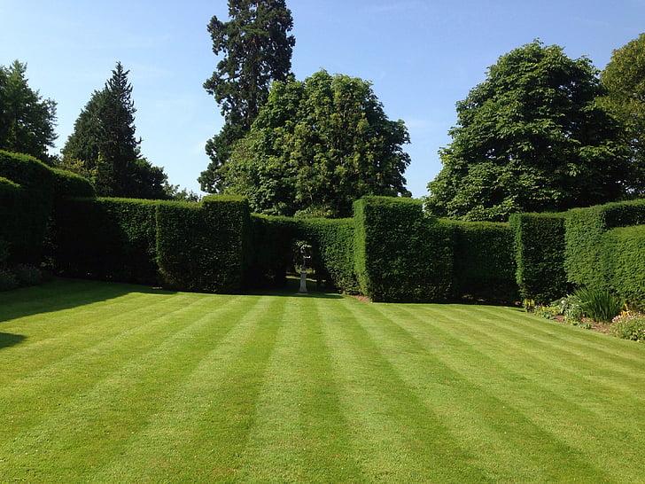 zahrada, trávník, tráva, léto, terénní úpravy