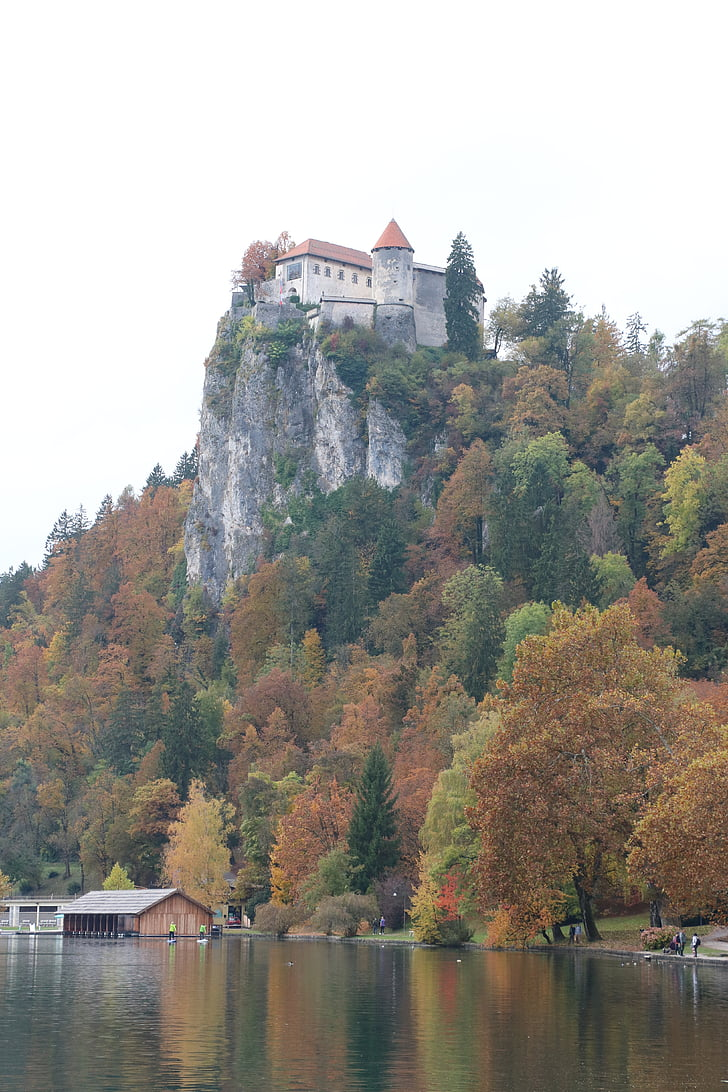 slovenia, castle, bled, lake, europe, tree, nature