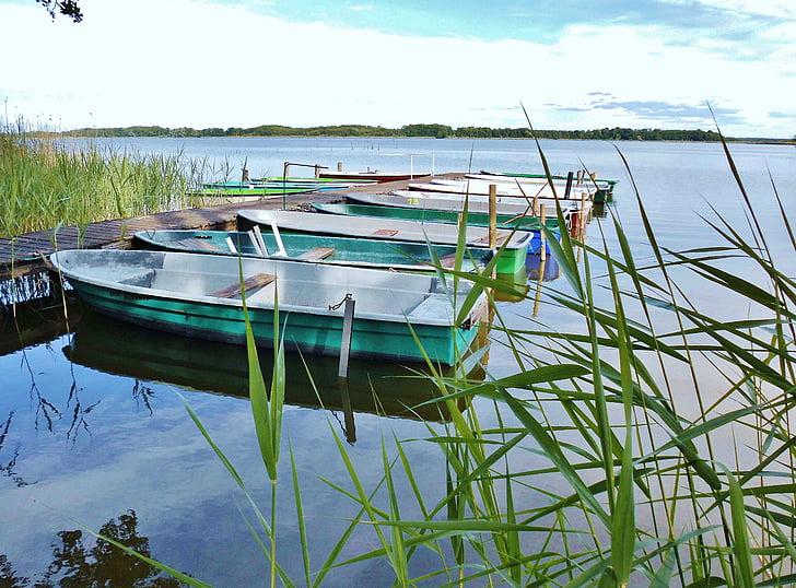 båtar, fiskebåtar, webben, vatten, sjön