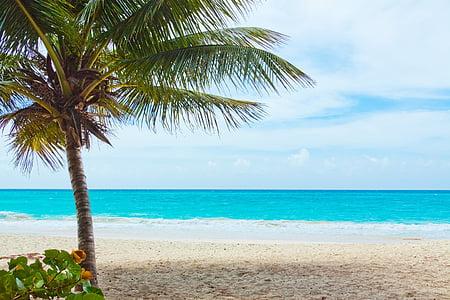 platja, bonica, blau, Costa, paisatge, oceà, Palma