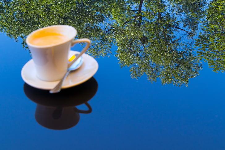 café, dia, espelhamento, espelho, floresta, azul, céu