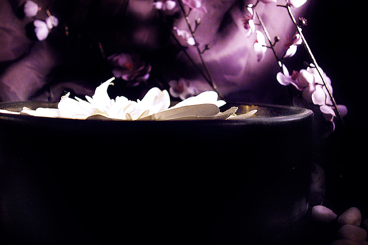 Lotus, σατέν, Ζεν, φόντα