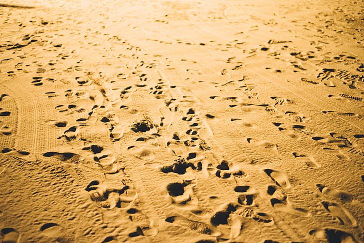 pēda, izdrukas, balta, smilts, pludmale, pēdās, pēdas