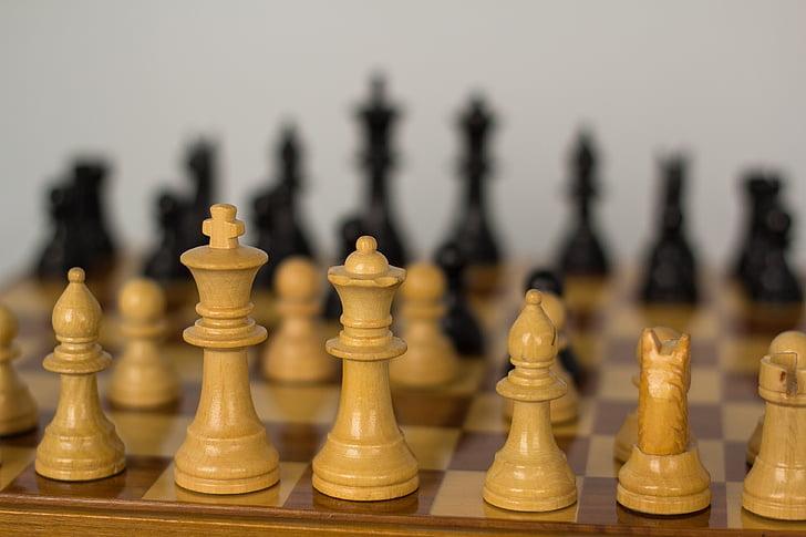 escacs, Guerra, repte, tàctiques, atac, combatre