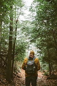 man, orange, jacket, woods, backpack, people, hiking