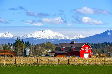 farm, agriculture, landscape, mountains, livestock, rural, country