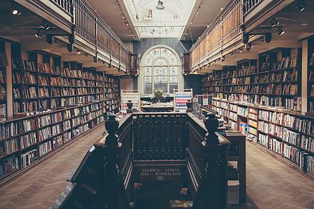 llibre, Biblioteca, sala, manera, llibres, negoci, l'educació
