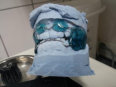 dentista, Ortodòncia, tren dental, semblava, aparells dentals, dent, reforç dental