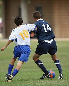 soccer, football, soccer players, football players, player, sport, ball
