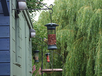 hranilica, hranjenje ptica, hranjenje