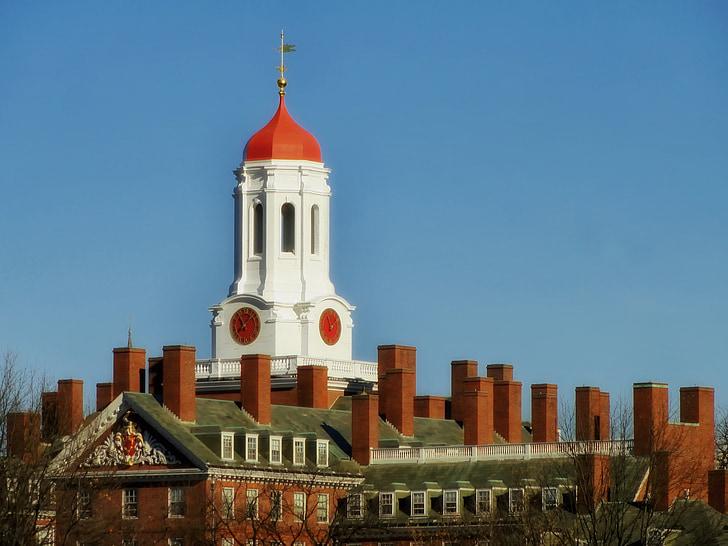 harvard, university, college, students, studies, buildings, landmark historic