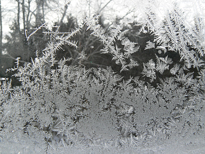 frost, winter, cold, ice, ice formations, gel