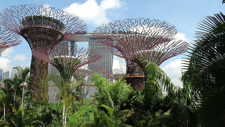 singapore, landmark, garden