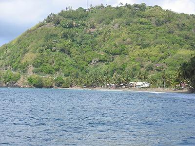 Costa, illa, tropical, tròpics, Carib, vacances, Mar