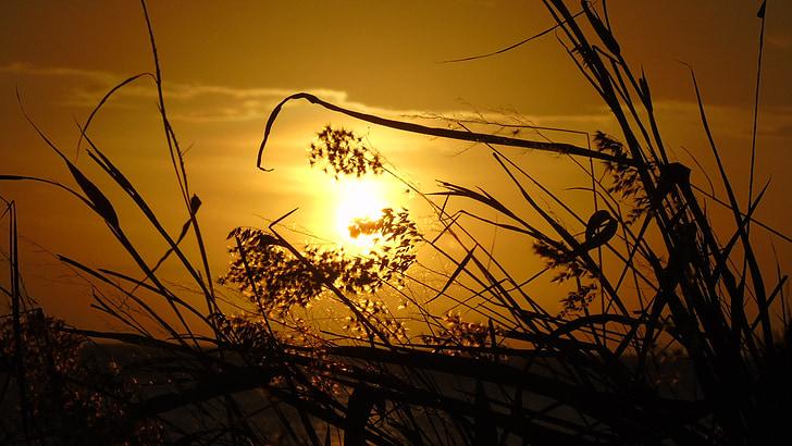 sunset, afternoon, beach