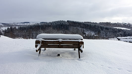 nieve, Blanco, paisaje de invierno, paisaje nieve, árboles nevados, Banco de, invierno