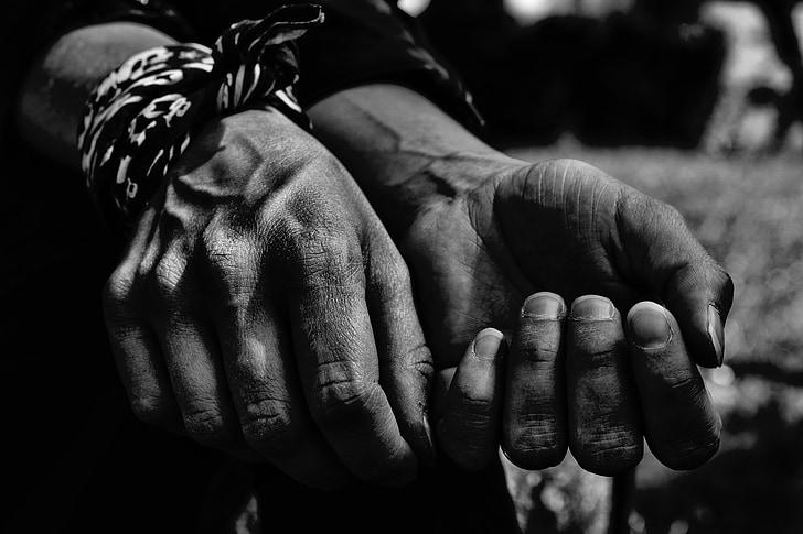 handen, hand, vinger, menselijke