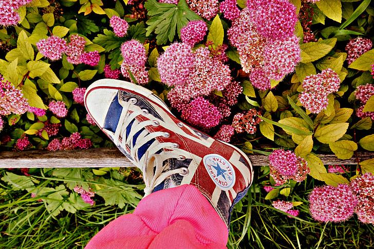 pēda, kāja, kurpes, sneaker, organizācija, ķermeņa daļas, sievietes