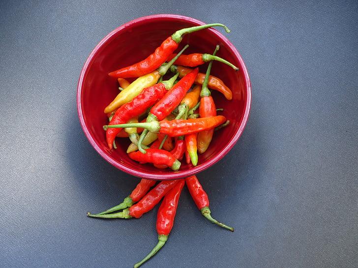 chili, punane, Vürtsikas, värske, toidu, taimne, Spice