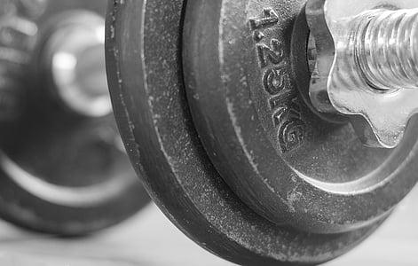fitnesa studija, hantele, svars, Sports, ķermeņa ēka, trenažieru zāle, svars pacelšanas