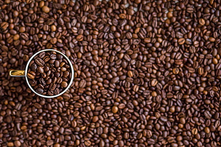 fesols, begudes, cafeteria, cafeïna, cafè, grans de cafè, Copa