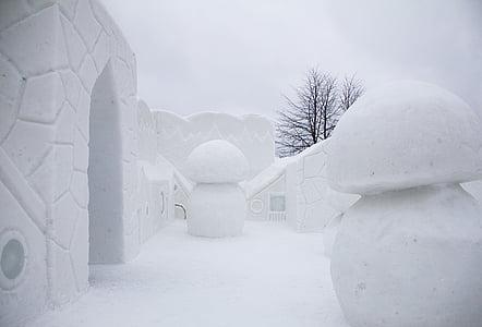 snow, city, winter, snowy, doorway, snow wall, snow fungus