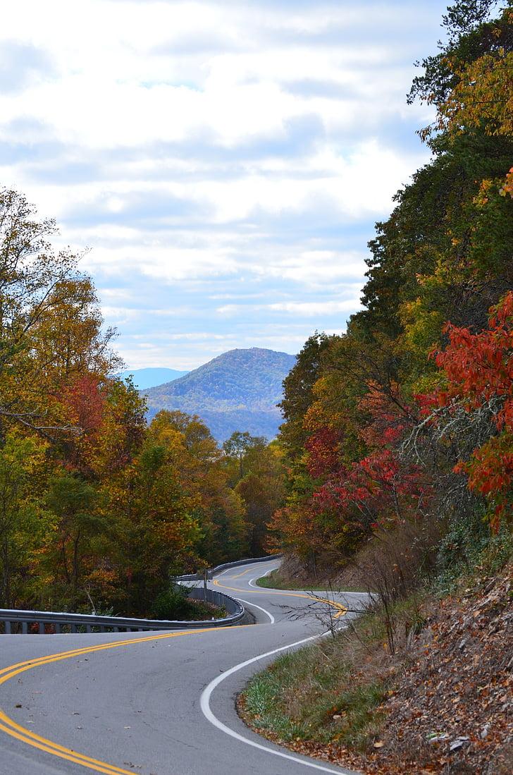 road, mountain, highway, landscape, autumn, trees