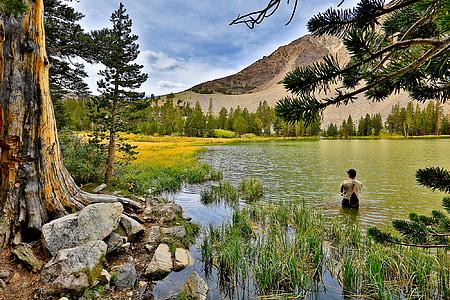 fishing, outdoors, fly-fishing, fisherman, water, nature, man