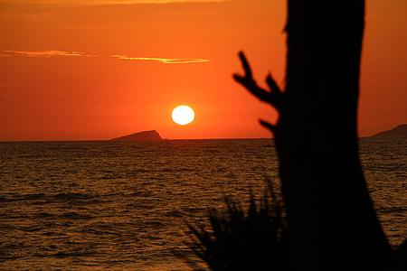 soluppgång, Sol, Mar, stranden, Sky, Horisont, Skymning gryning