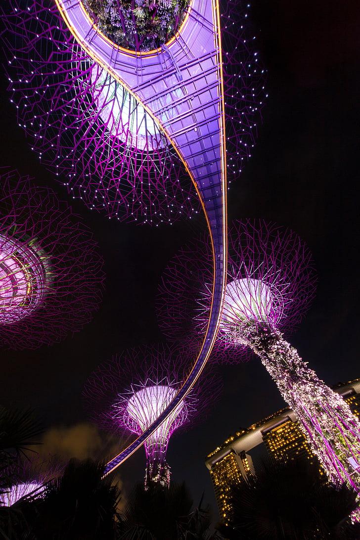 싱가포르, 밤, 아키텍처, 아시아, 건물, 스카이 스크 래퍼, 도시