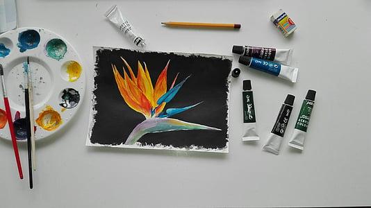 maali, akvarell, harja, lill, papagájvirág, mitme värviline, siseruumides