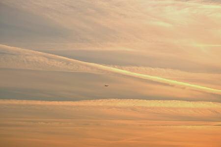 matí, núvols, estat d'ànim, cels, boira, sol, en la matinada