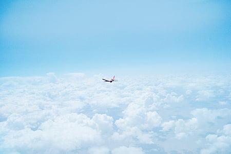 samolot, chmury, pływające, ponad chmurami, samolot, niebo