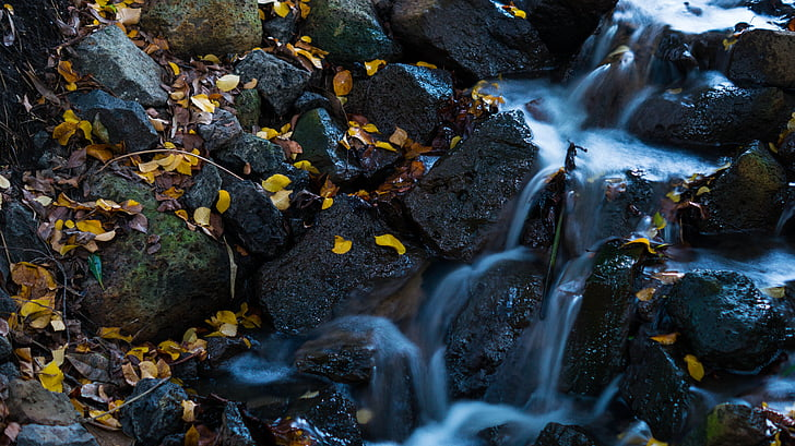 vízesés, levelek, víz, természet, természetes víz, természetes