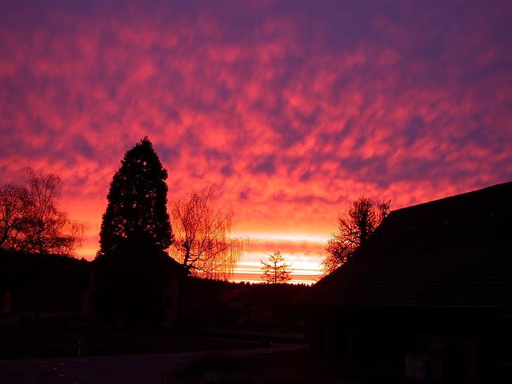 Mañana, morgenrot, sol, cielo, amanecer, rojo, puesta de sol