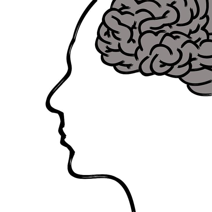 đầu, não bộ, suy nghĩ, cơ thể con người, khuôn mặt, tâm lý học, nồng độ