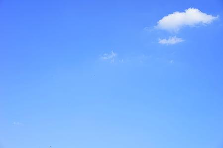 เมฆ, ลัส, ลัสเมฆ, วันในฤดูร้อน, ท้องฟ้า, สีฟ้า, ซันนี่
