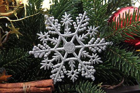 christmas, star, silver, fir green, decoration, winter, branch